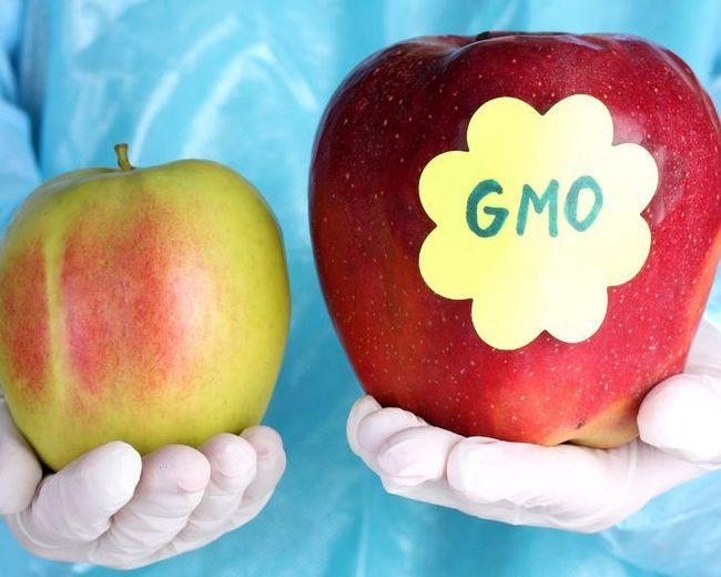 С 26 июня действуют новые правила маркировки товара, в составе которого есть ГМО