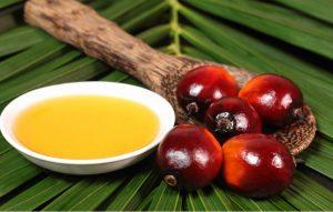 В РФ сократились объемы поставок пальмового масла